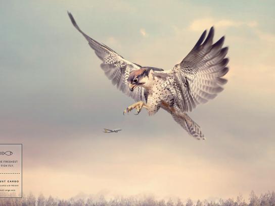 Trust Cargo International Print Ad - Falcon