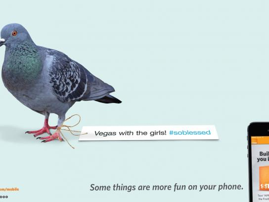 FirstBank Outdoor Ad -  Hashtagged to a pigeon leg