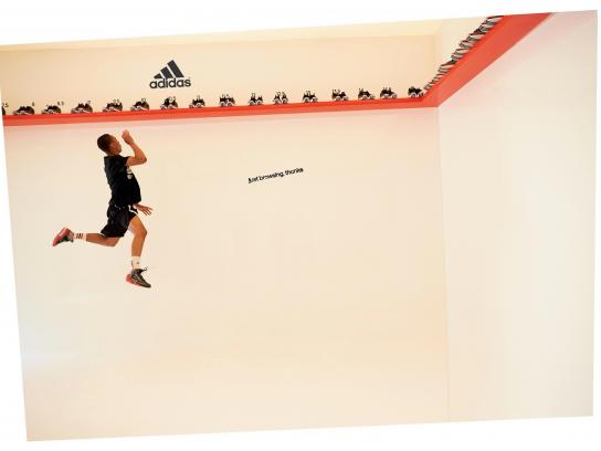 Adidas Print Ad -  Just Browsing, Thanks