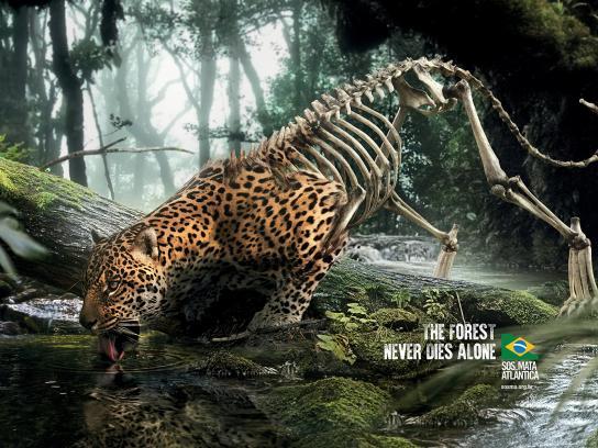SOS Mata Atlântica Print Ad - Jaguar