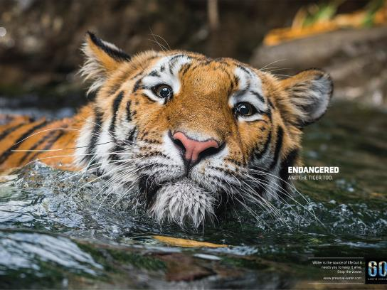 Earth Hour Print Ad -  Tiger