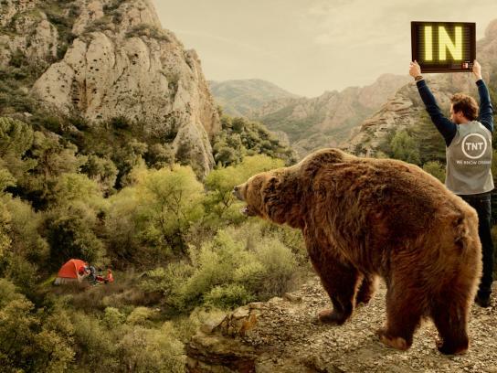 TNT Print Ad -  Bear