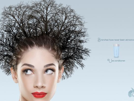 Canipec Print Ad -  Tree