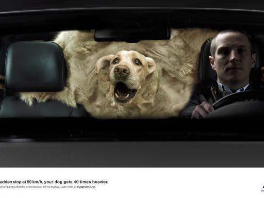Norwegian Council for Road Safety Print Ad -  A tonn of dog
