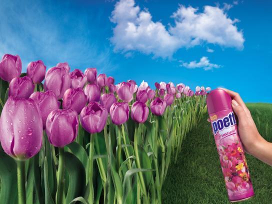 Poett Print Ad -  Tulips