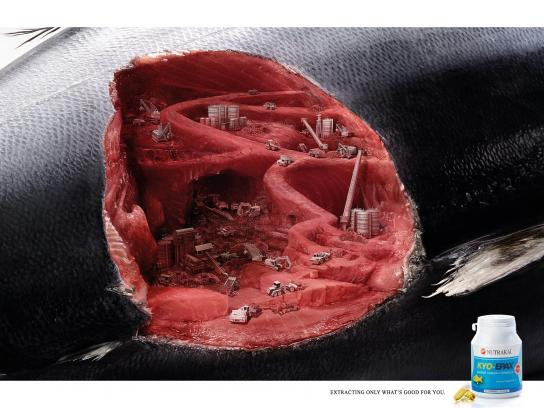 Kyo-Epax Print Ad -  Tuna