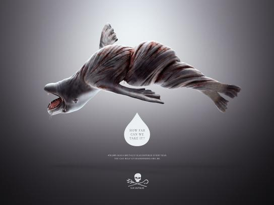 Sea Shepherd Print Ad -  Twisted Seal