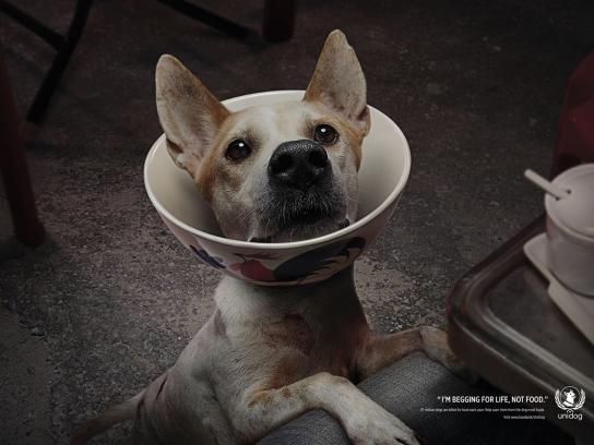 UniDog Print Ad -  Dog, 1