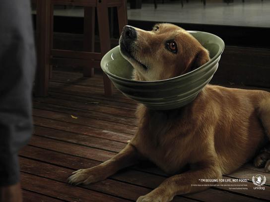 UniDog Print Ad -  Dog, 3