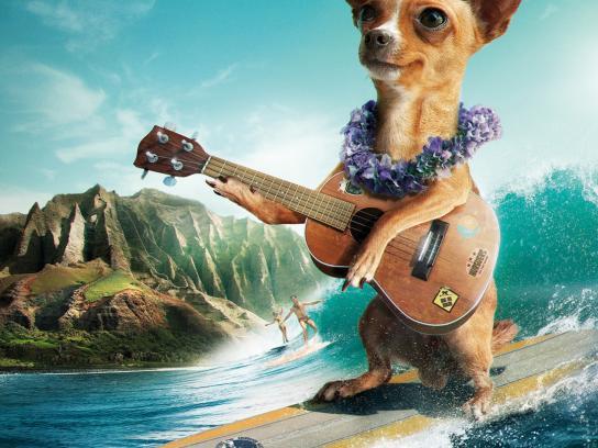 Vichy Catalán Print Ad -  Surfer Chihuahua