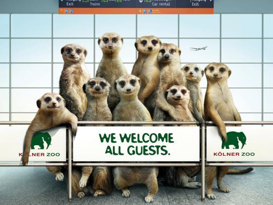 Zoo Cologne Outdoor Ad -  Maarket