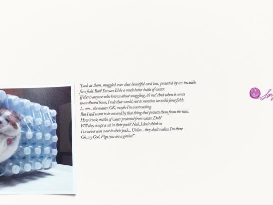 Whiskas Print Ad - Bottle pack