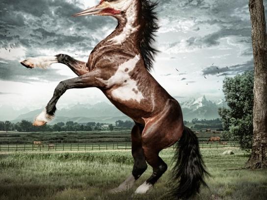 Black&Decker Outdoor Ad -  Woodpecker Horse