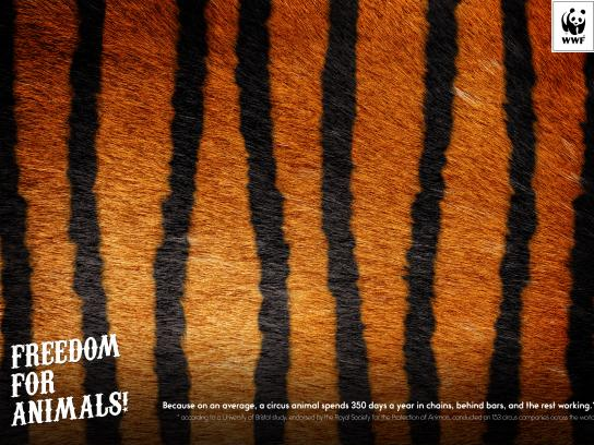 WWF Outdoor Ad - Tiger
