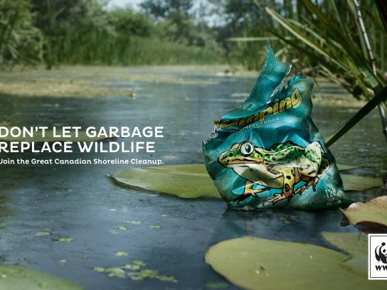 WWF Print Ad - Frog
