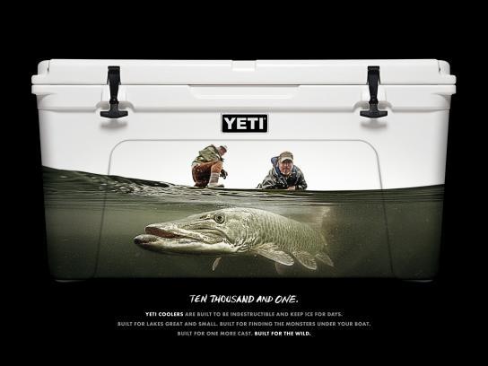 YETI Print Ad -  Musky