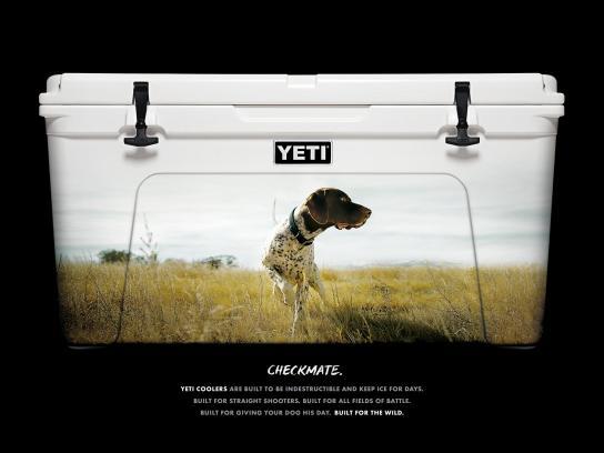YETI Print Ad -  Quail