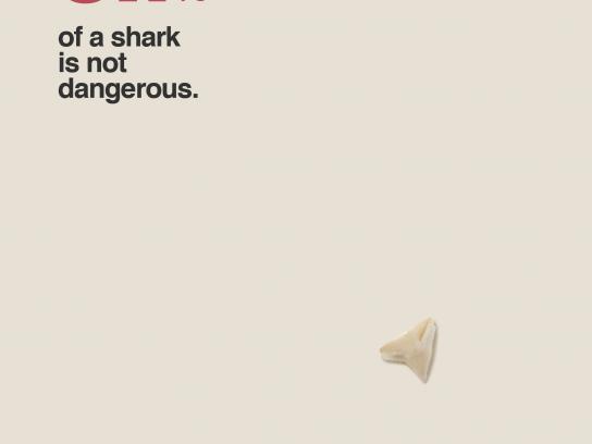 Protex Print Ad - Shark