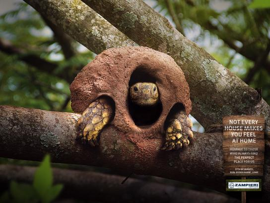 Zampieri Imóveis Outdoor Ad - Turtle