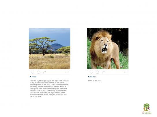 Zoológico de São Paulo Film Ad -  Lion