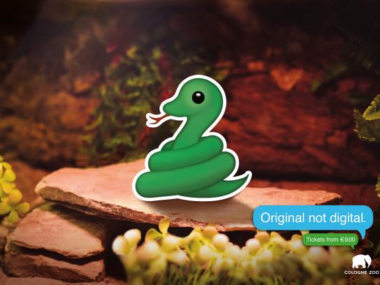 Cologne Zoo Print Ad - Snake