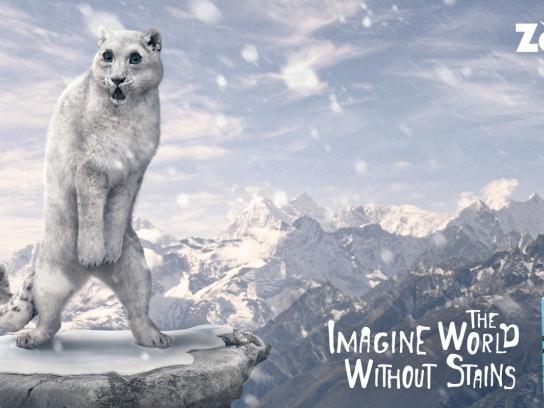 ZooZoo Print Ad -  Snow leopard