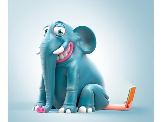 ZVV Print Ad -  Elephant