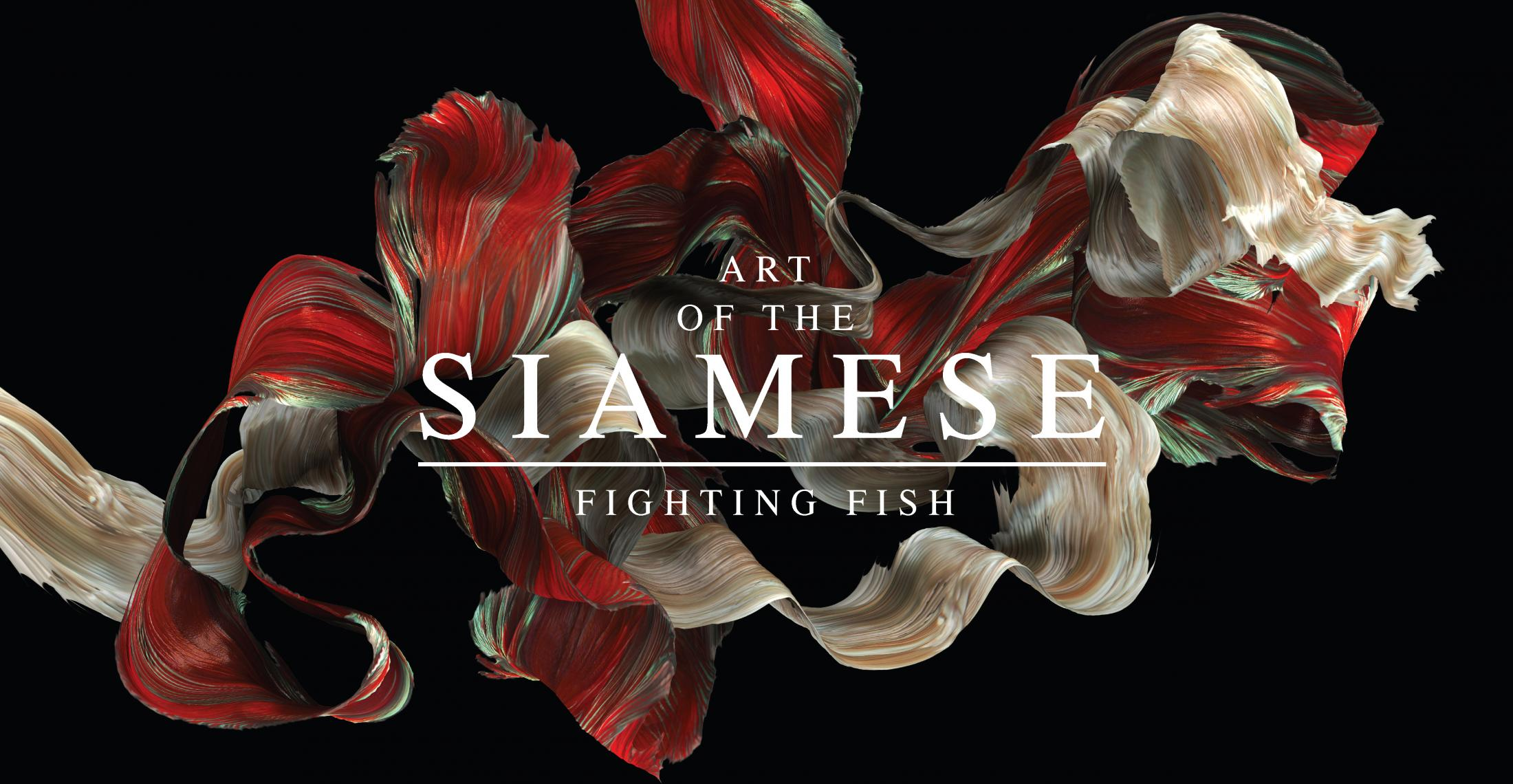 Optimum Betta Integrated Ad - Art of the Siamese Fighting Fish