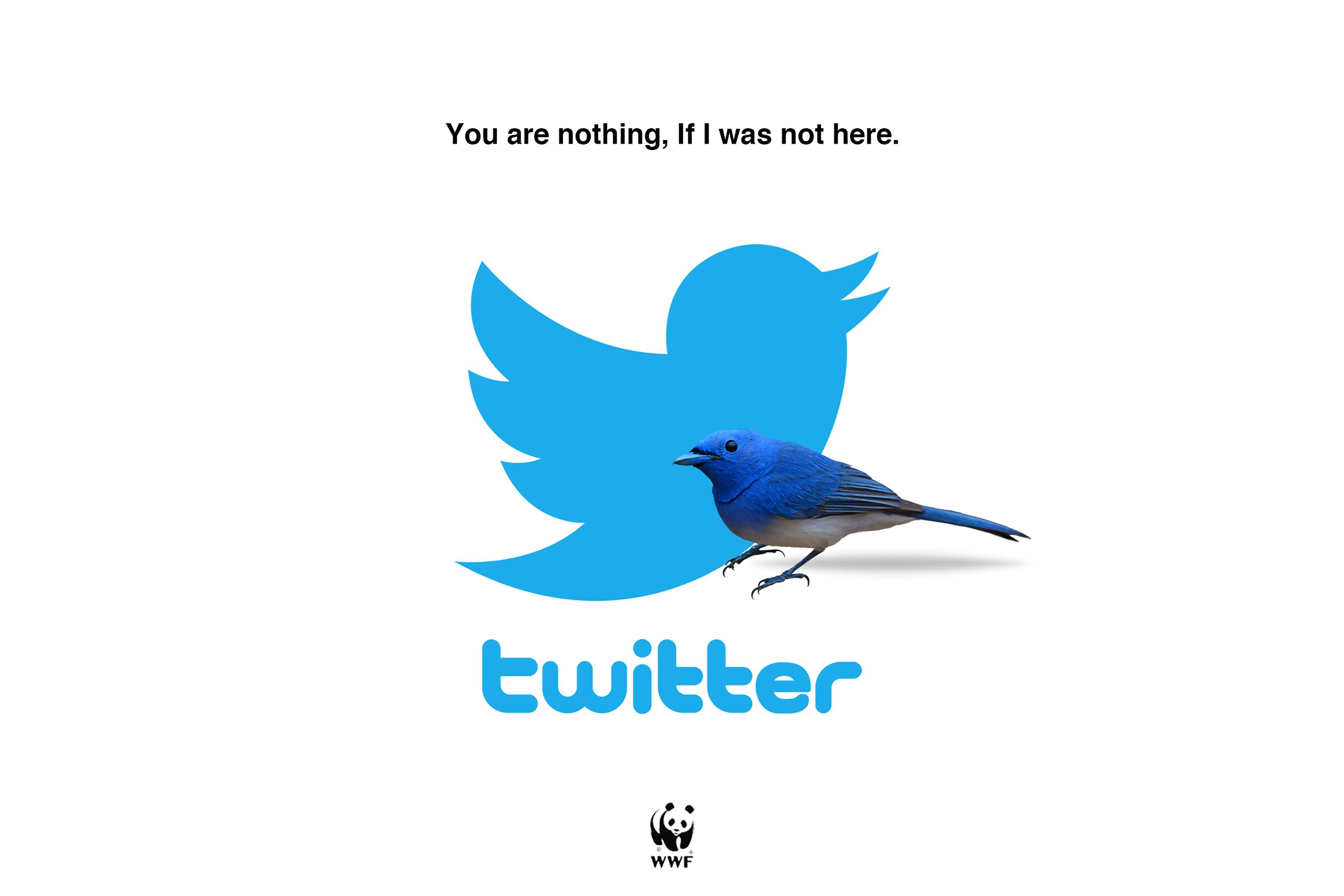 WWF Outdoor Ad - Twitter