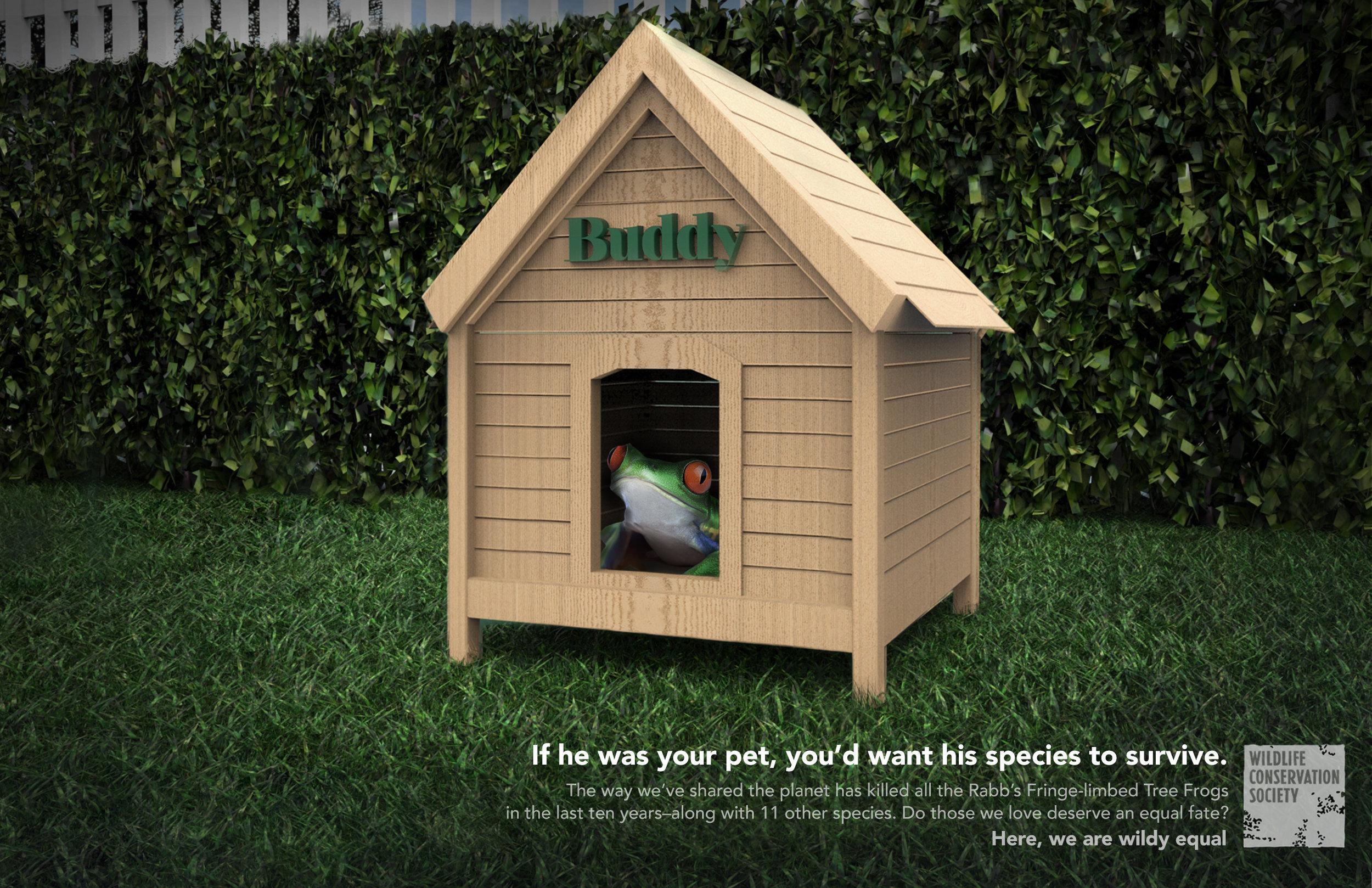 Wildlife Conservation Society Print Ad - Buddy