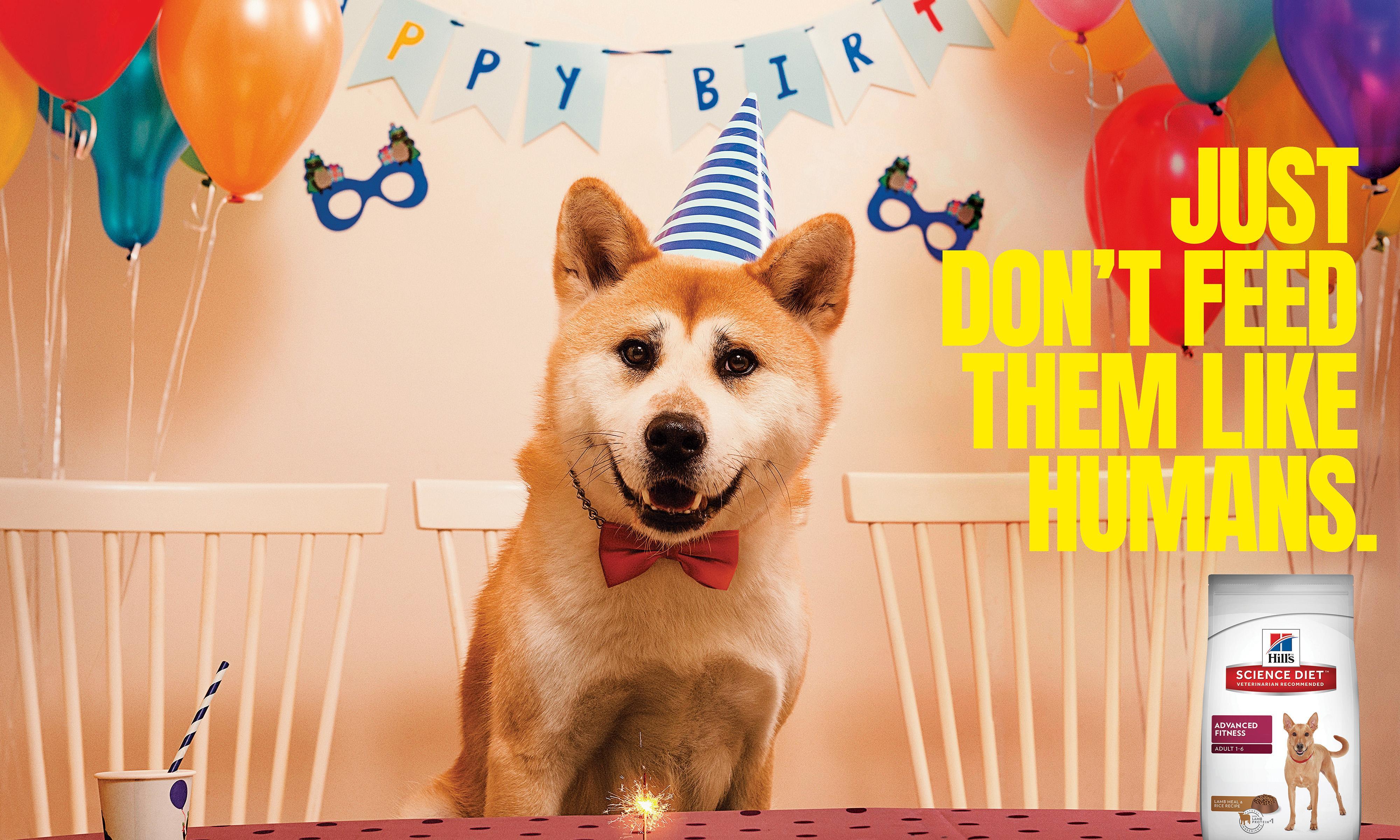 Hill's Print Ad - Birthday