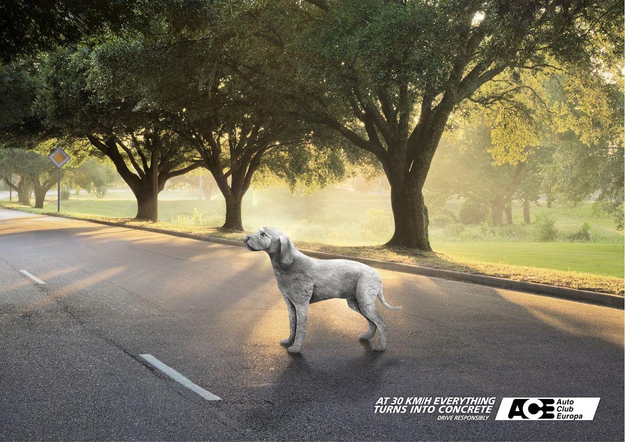 Auto Club Europa Print Ad -  Dog