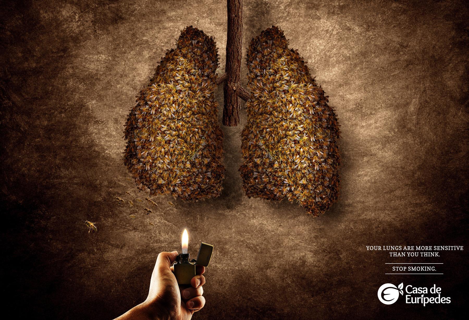 Casa de Eurípedes Print Ad -  Bees