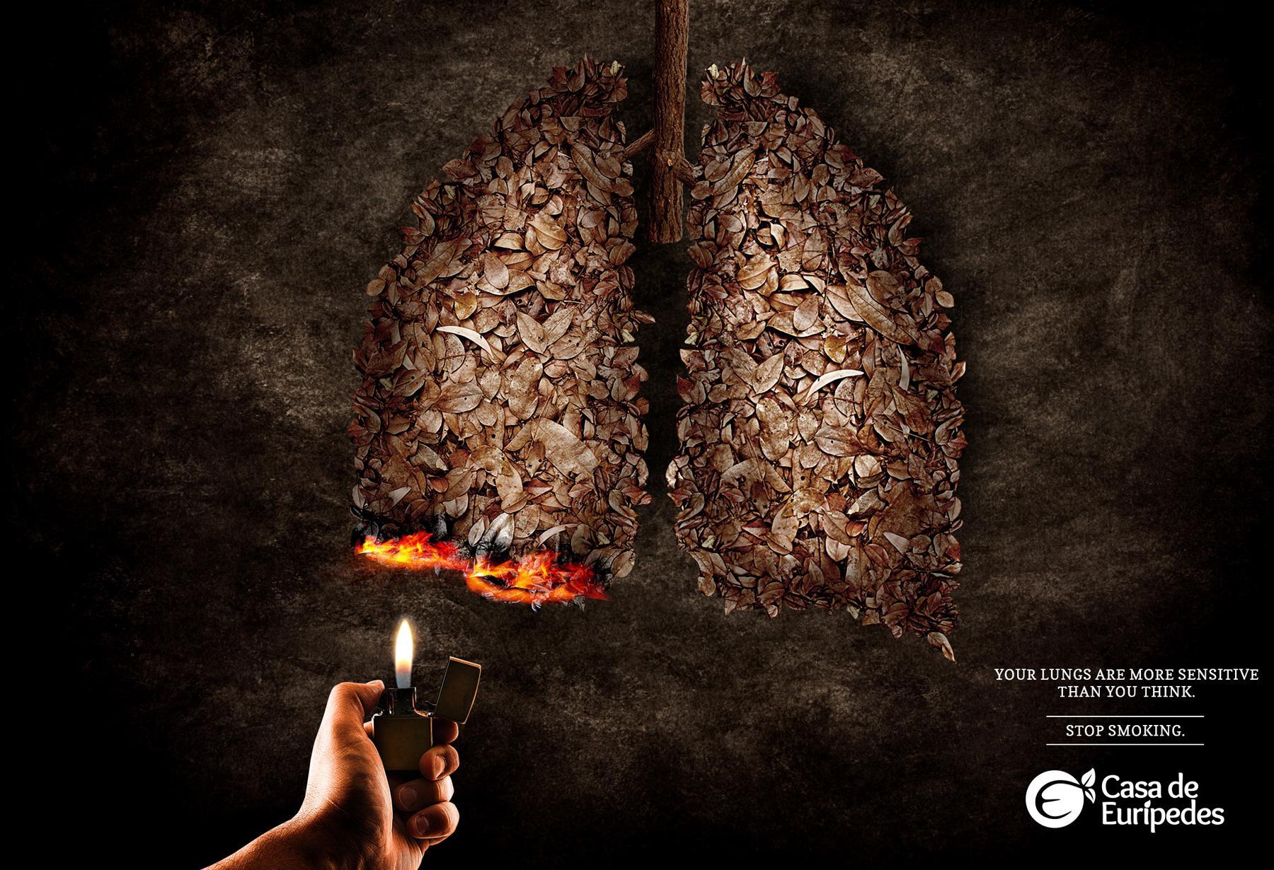 Casa de Eurípedes Print Ad -  Leaves