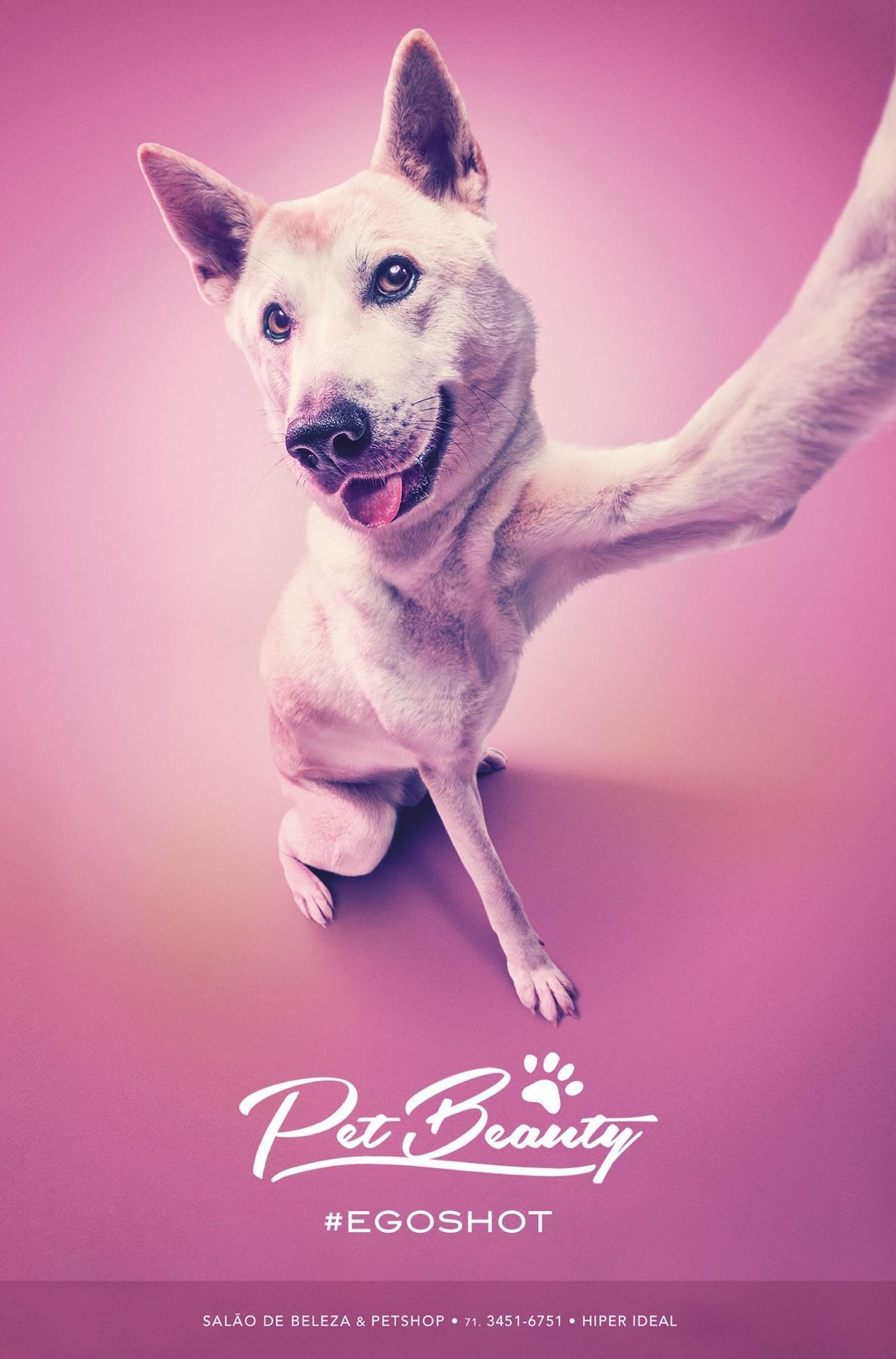 PetBeauty Print Ad -  #egoshot
