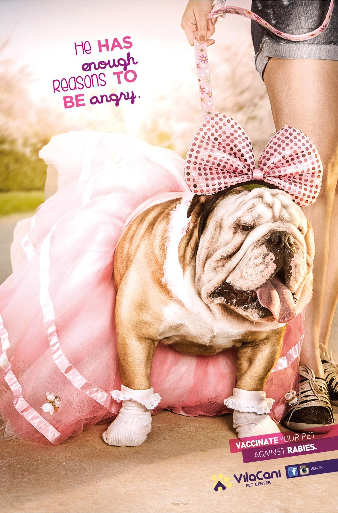 Villa Cani Pet Center Print Ad -  Dress