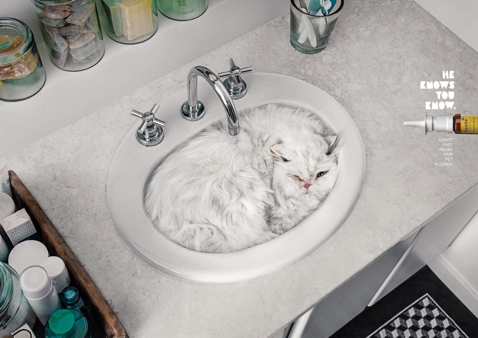 Aznite Print Ad - Cat Bath