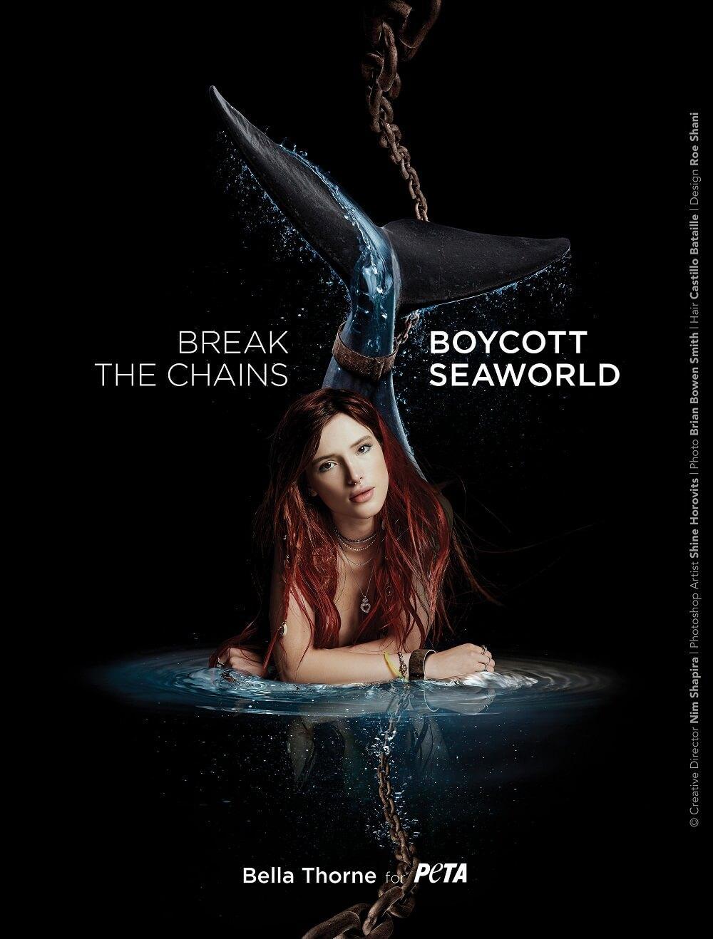 PETA Print Ad - Boycott SeaWorld