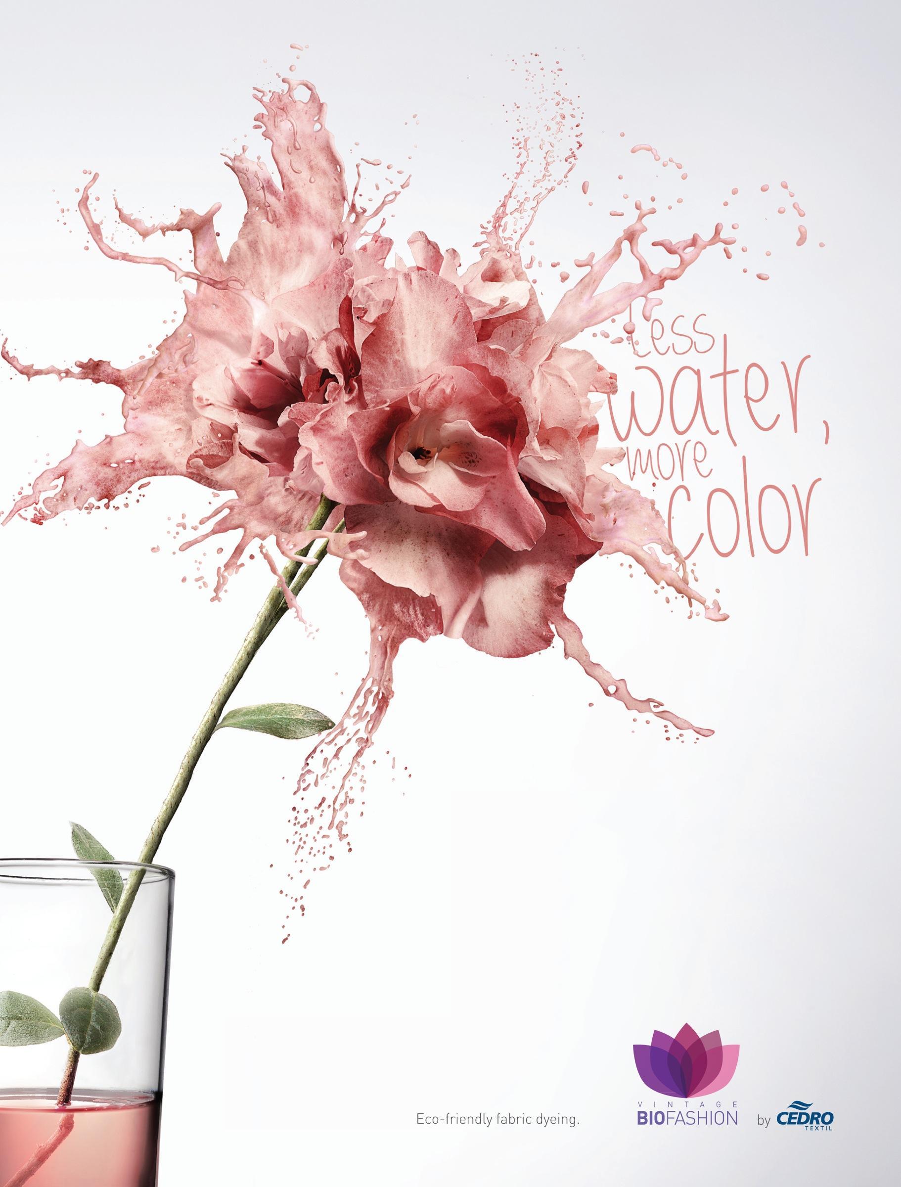 Cedro Textil Print Ad -  Flower, 1