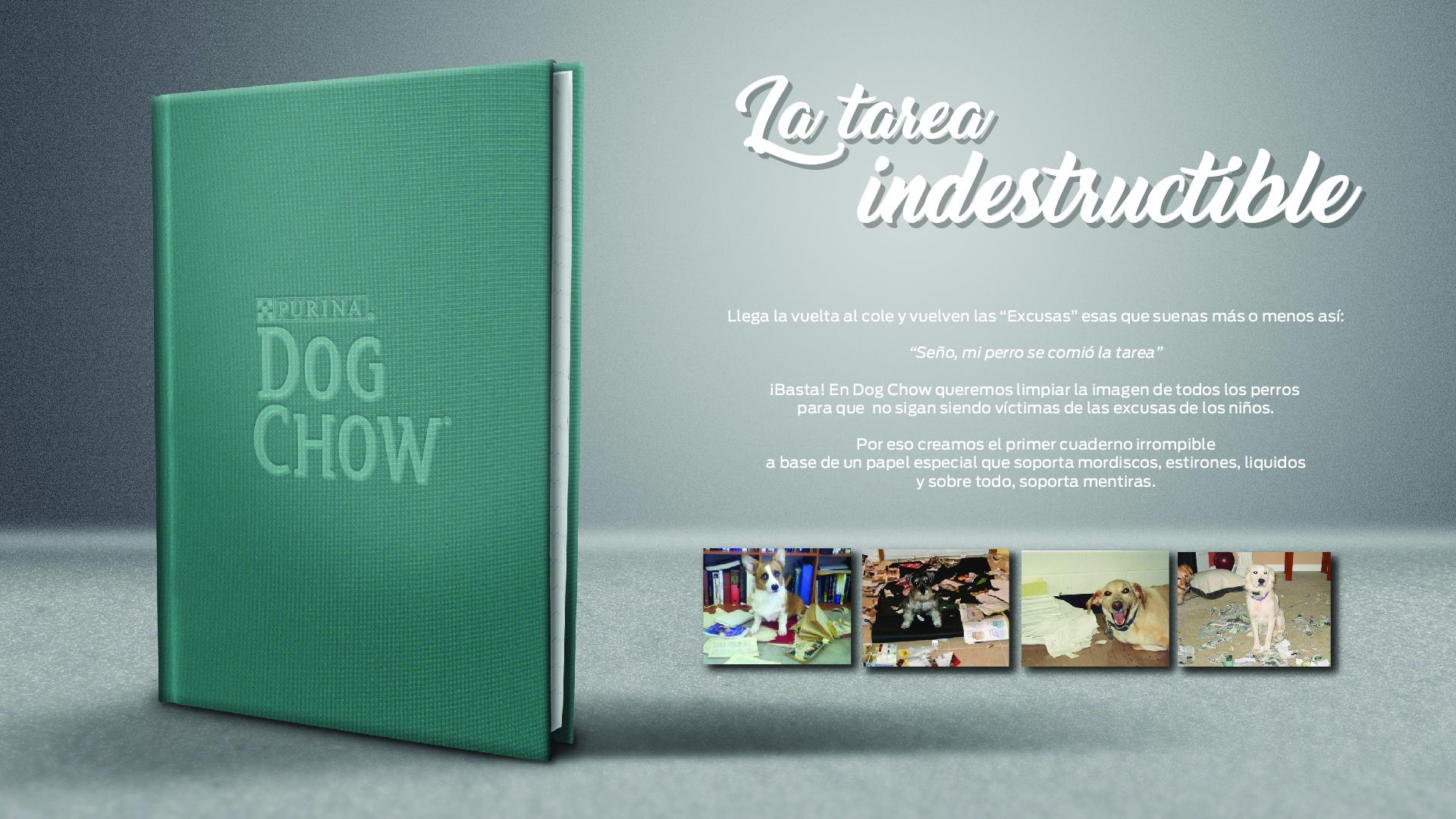 Purina Experiential Ad - Indestructible Homework
