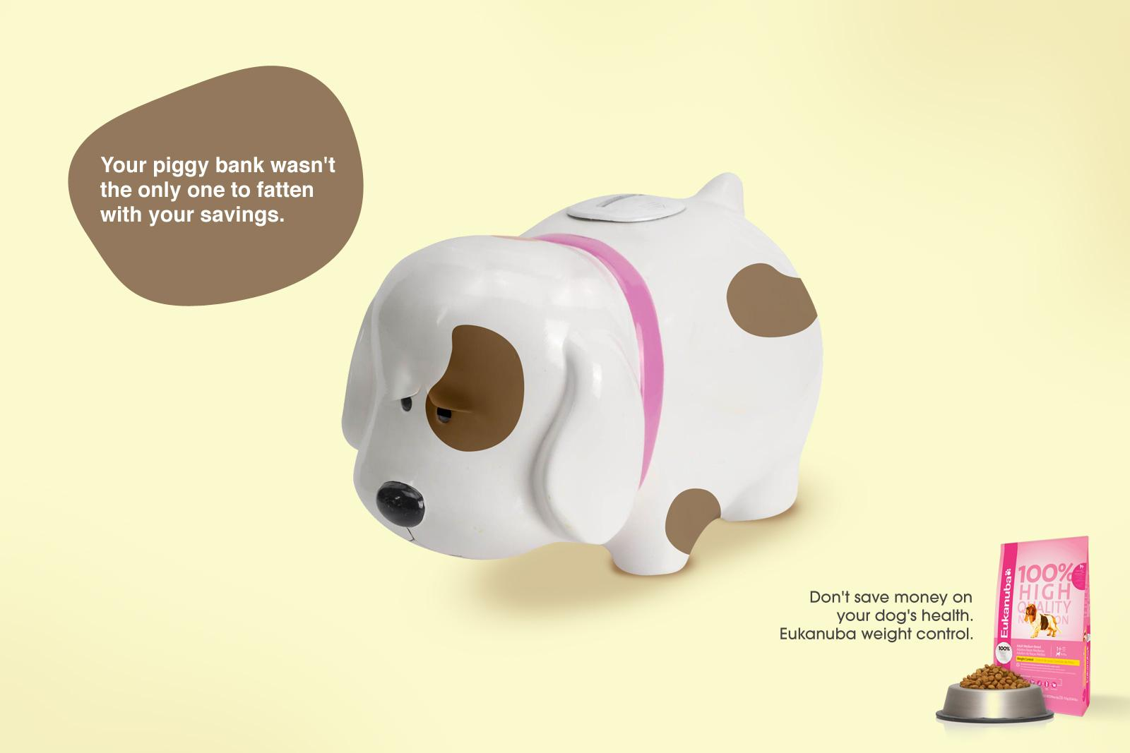 Eukanuba Print Ad -  Dog, 2