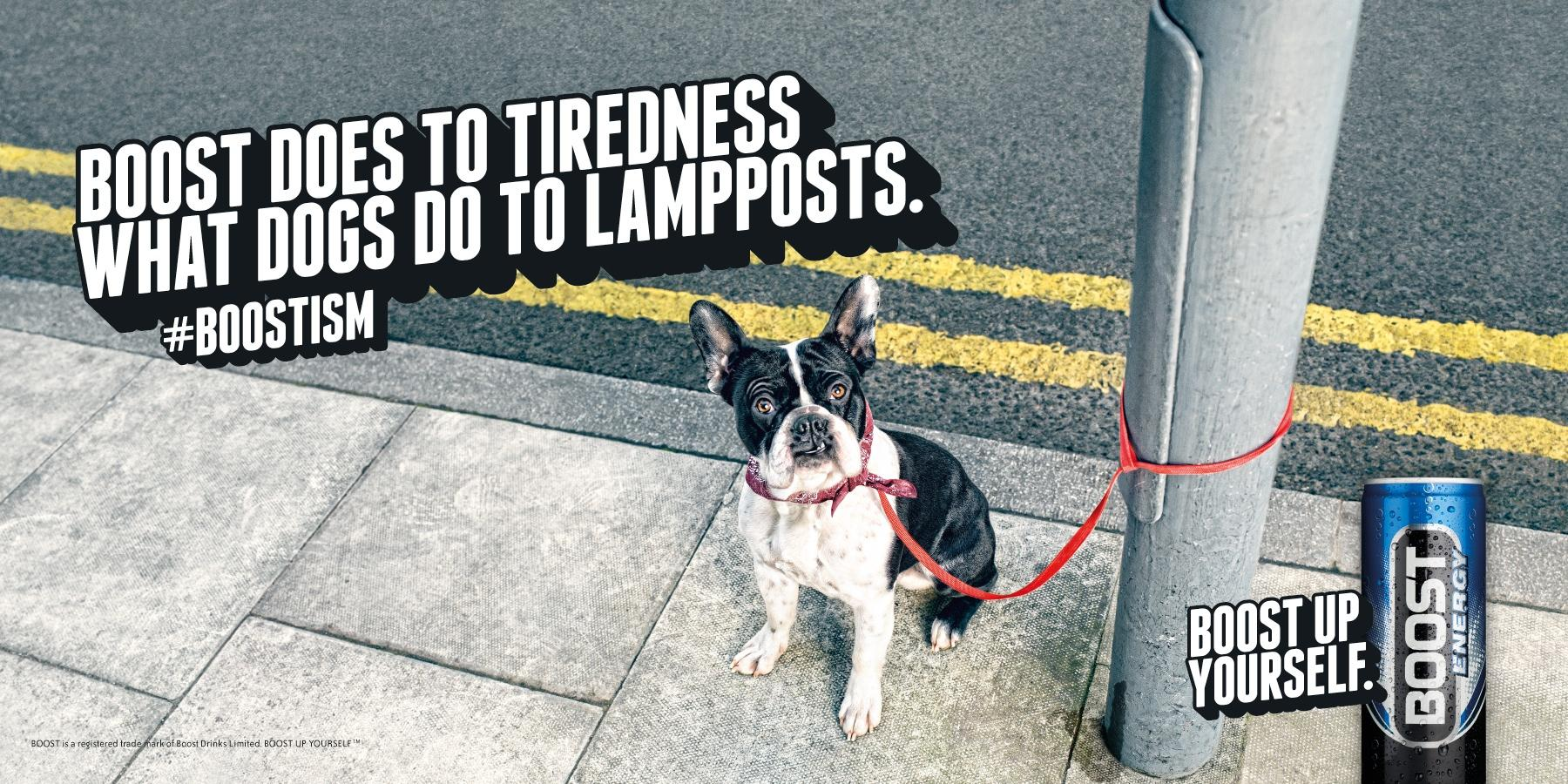 Boost Outdoor Ad -  Dog