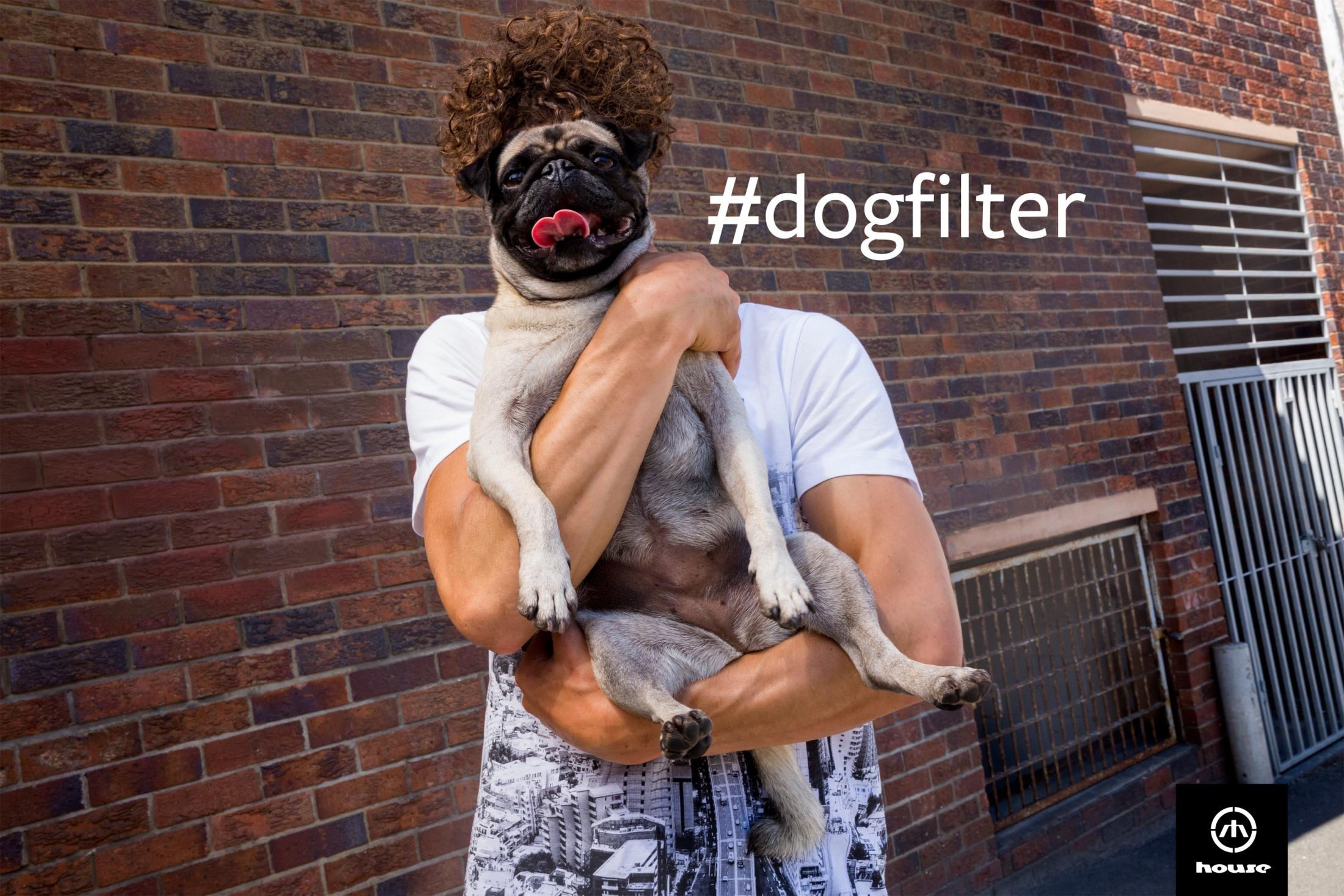 House Print Ad - #dogfilter