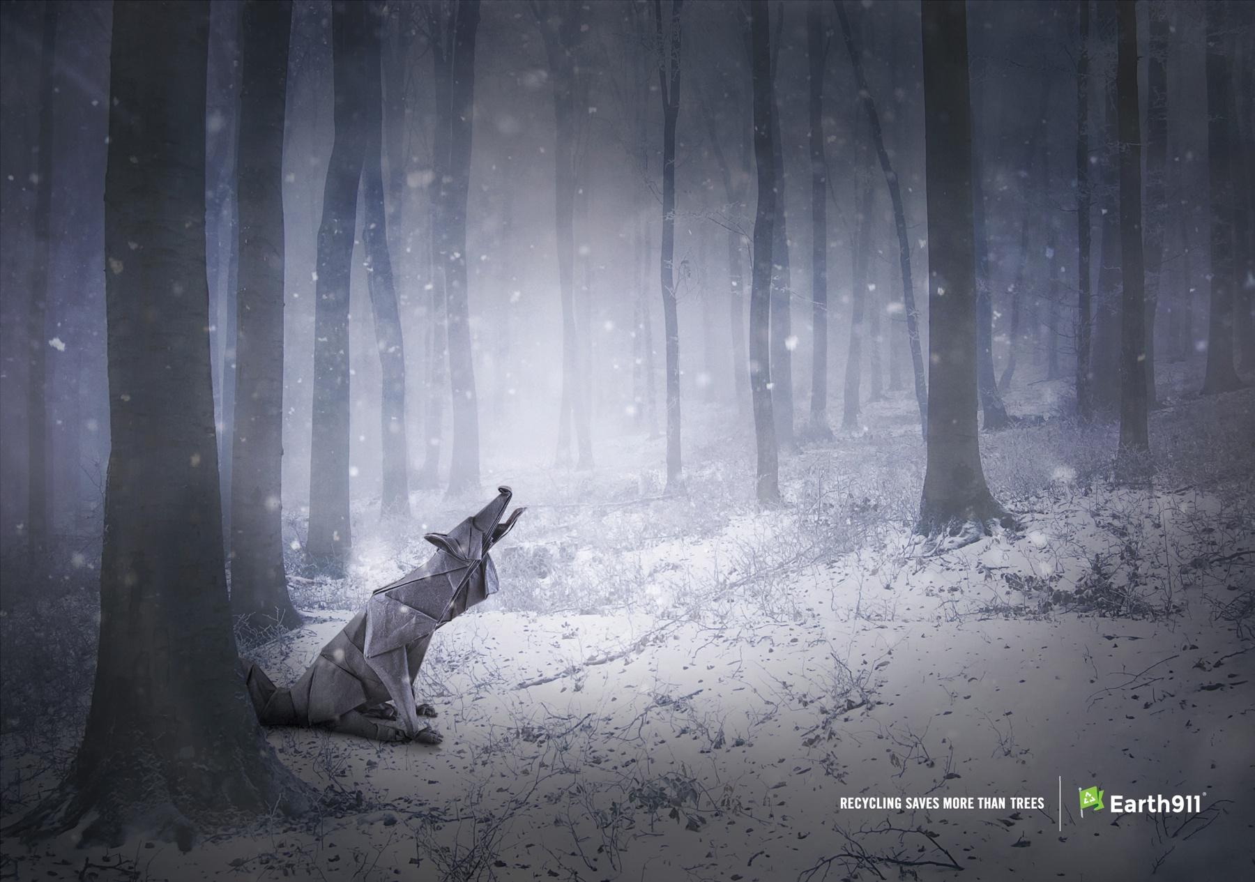 Earth 911 Print Ad -  Recycling saves more than trees, Wolf