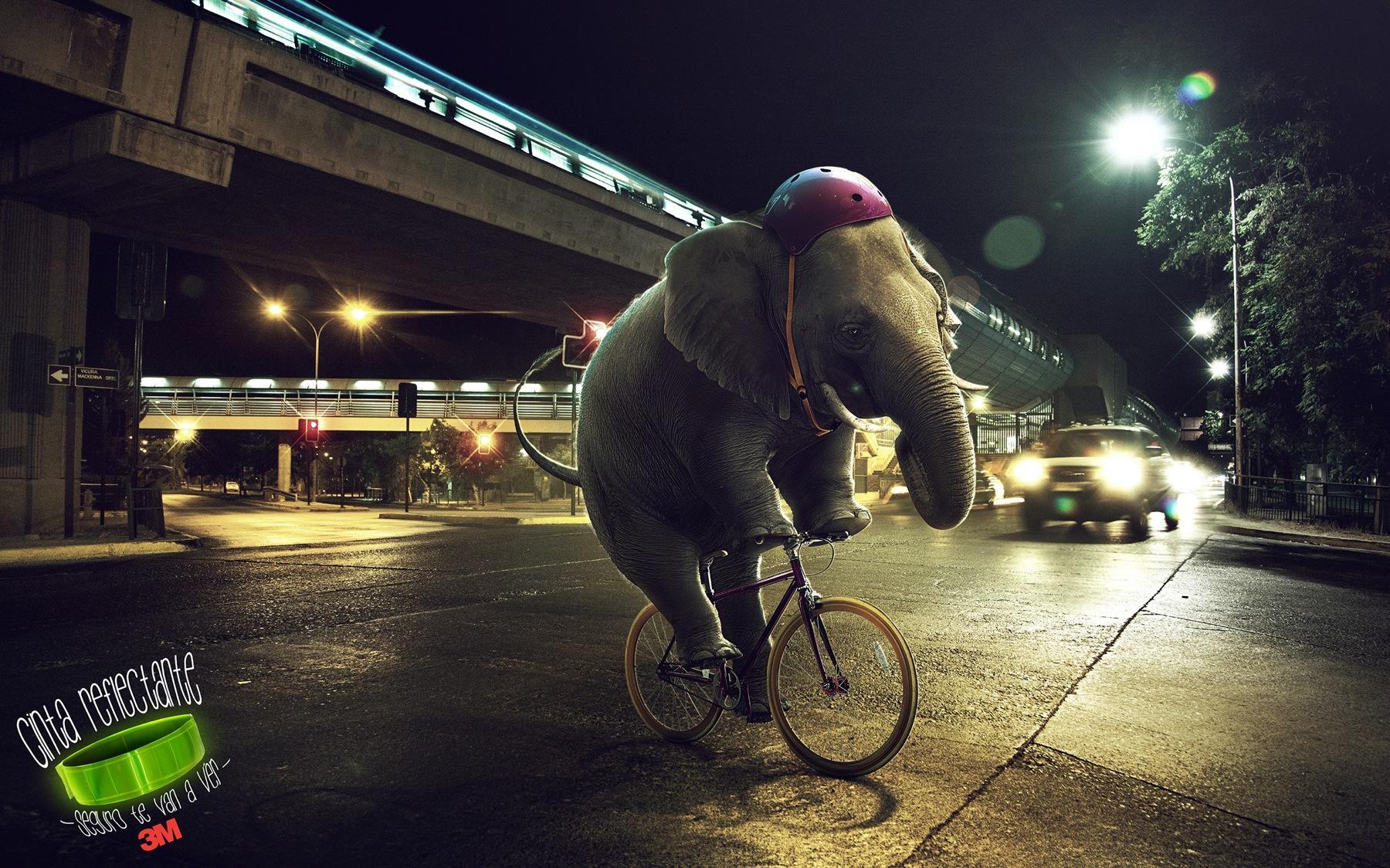 3M Print Ad -  Elephant