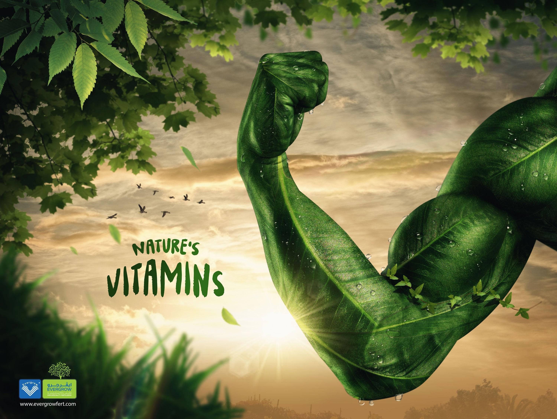 Evergrow Fertilizers Print Ad - Nature's Vitamin