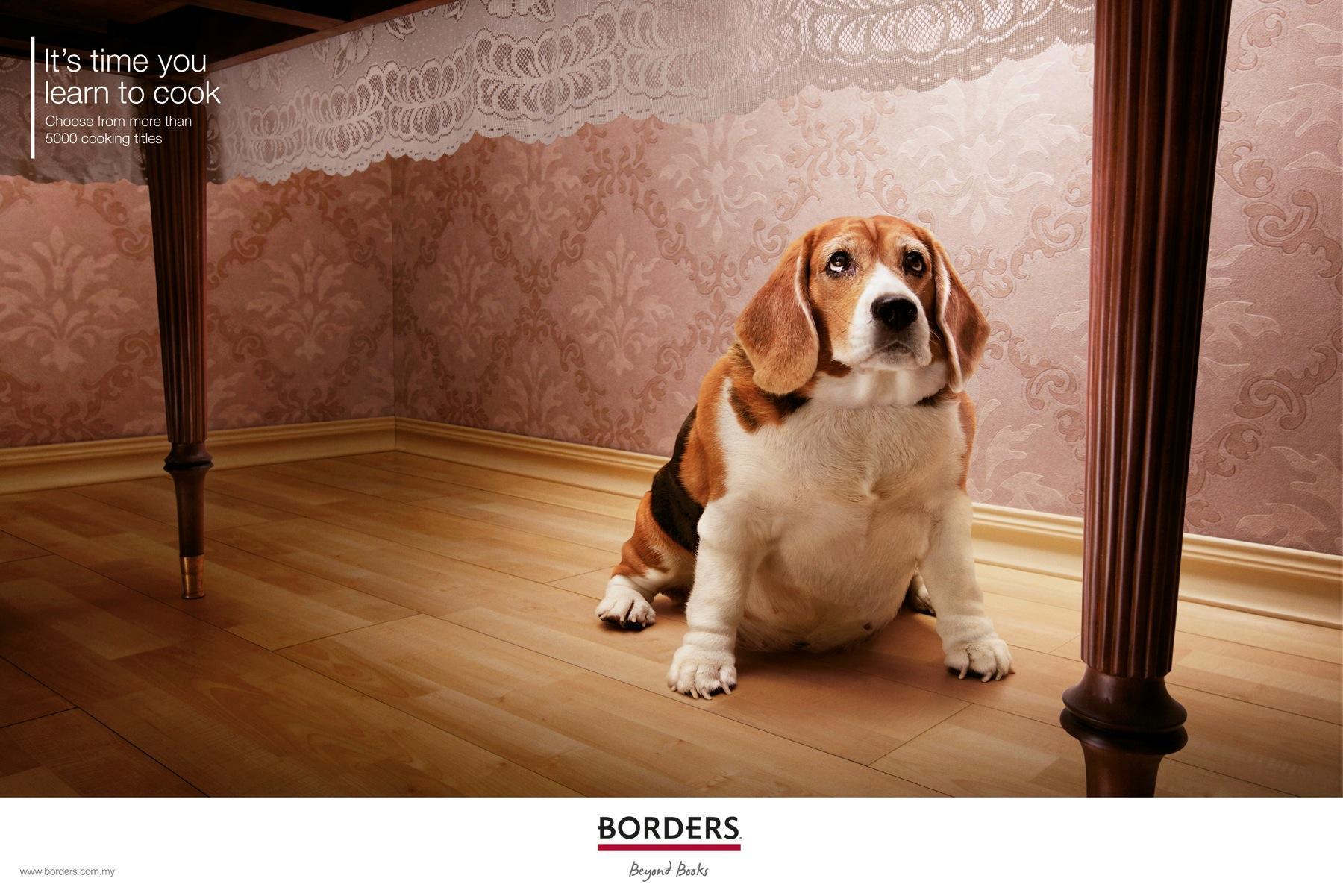 Borders Print Ad -  Fat dog