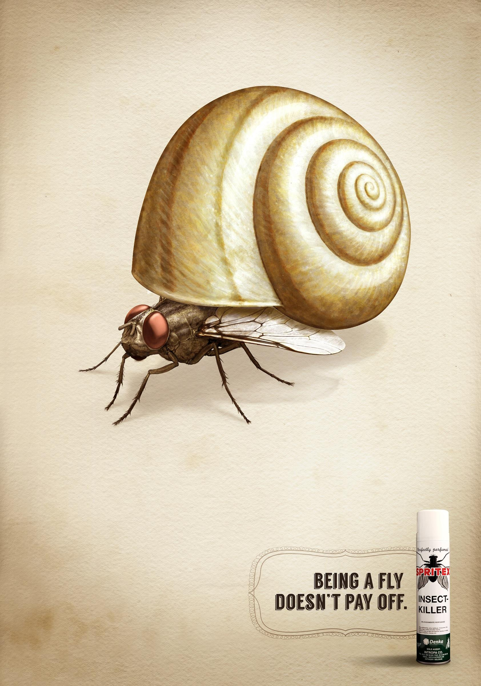 Spritex Print Ad -  Fly