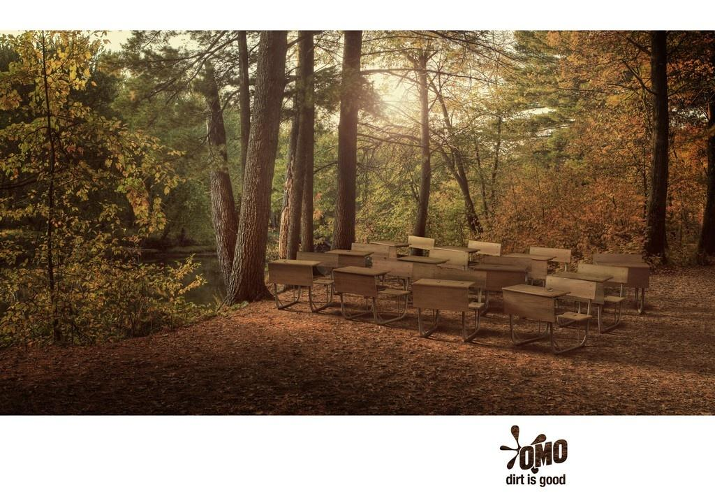 OMO Print Ad -  Classroom Forest