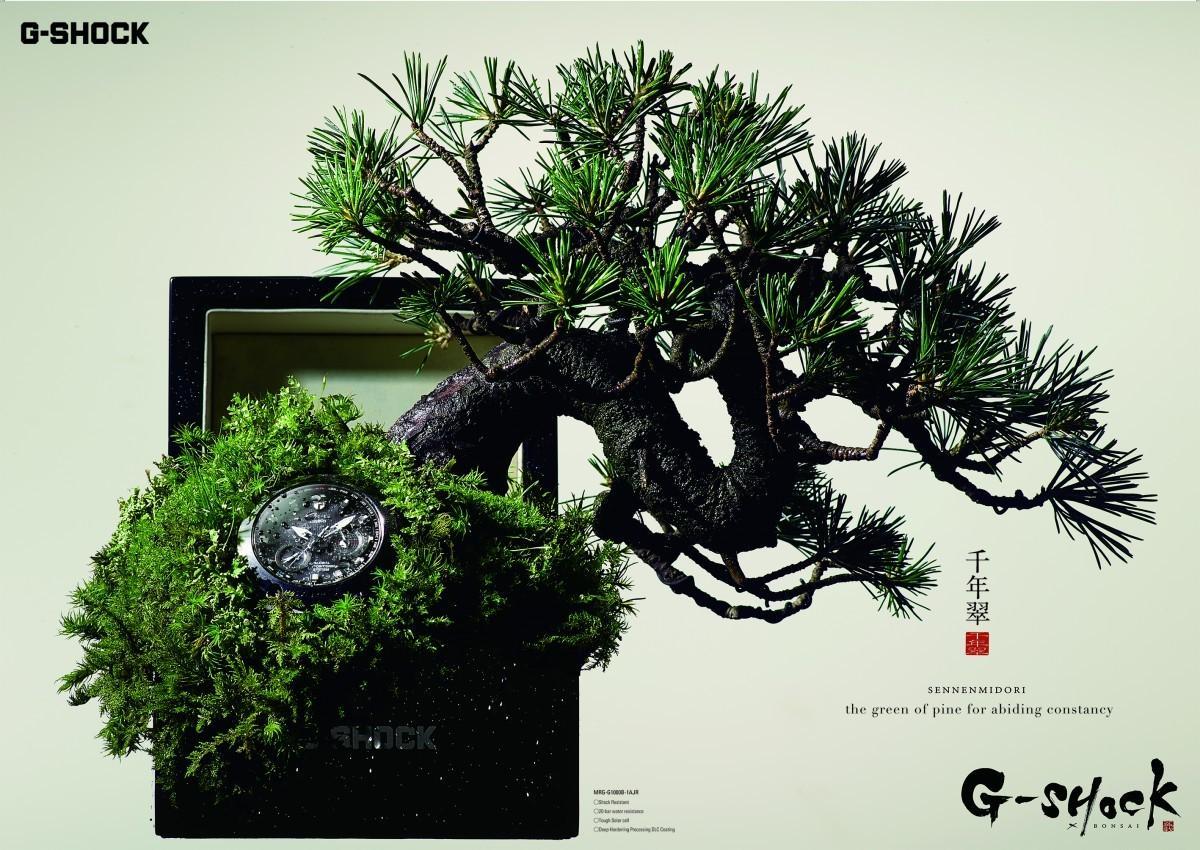 G-SHOCK Print Ad - Bonsai, 1